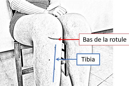 Auto-massage chinois Stimuler l'immunité avec le massage des  points Estomac 36: localisation de la rotule et du genou