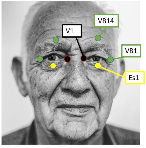 old-man-1208210_1920-1-Free-Photos Prendre soin de ses yeux. Masser les points autour des yeux.